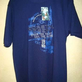 t-shirt courtes manches coton pour homme - brodé en différents coloris